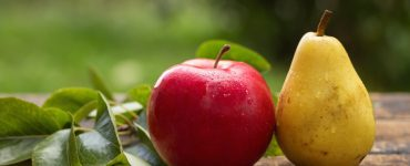 Apples&Pears - WMS